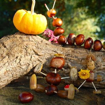 Bild Spielzeug aus Naturmaterialien