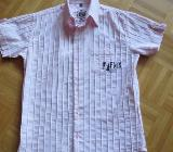 Hemd (sportlich), Gr.36/S, Kurzarm - Essen